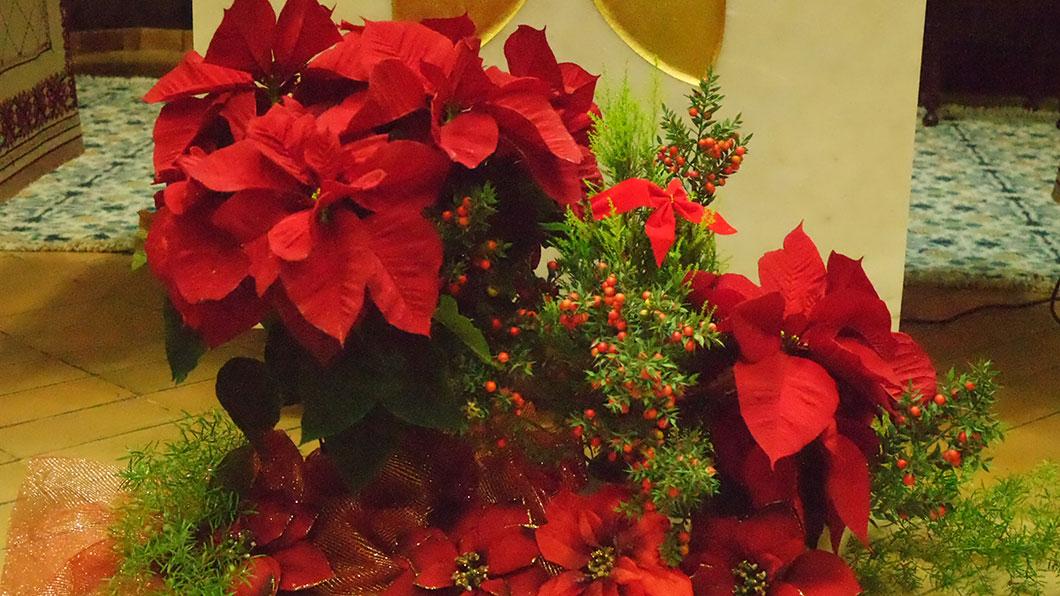 Celebrações Natalícias