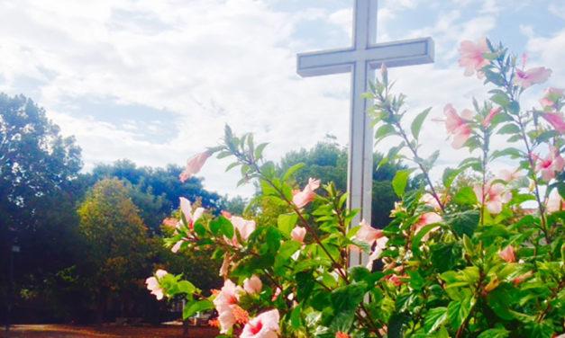 Cruz de Jesus, sinal de Amor!