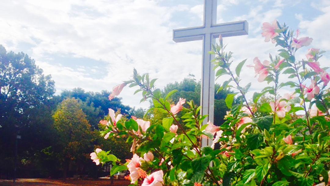 Celebrações: Quaresma rumo à Páscoa