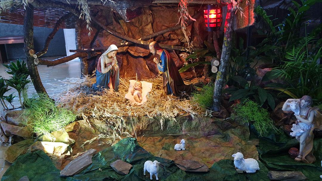 Noite Santa! Noite Feliz! Hoje nasce Jesus!
