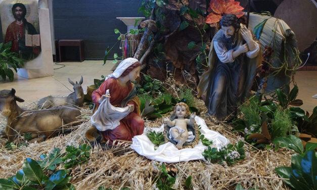 Santas Festas do Natal de Jesus